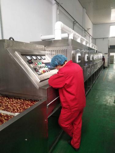 微波设备在食品工业方面的应用