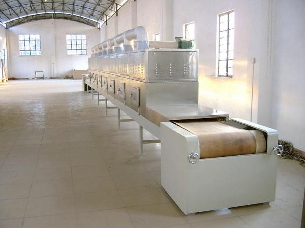 微波牛肉干干燥杀菌机