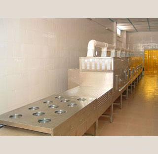 隧道式微波干燥杀菌机
