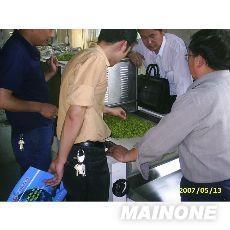 微波中草药干燥杀菌设备