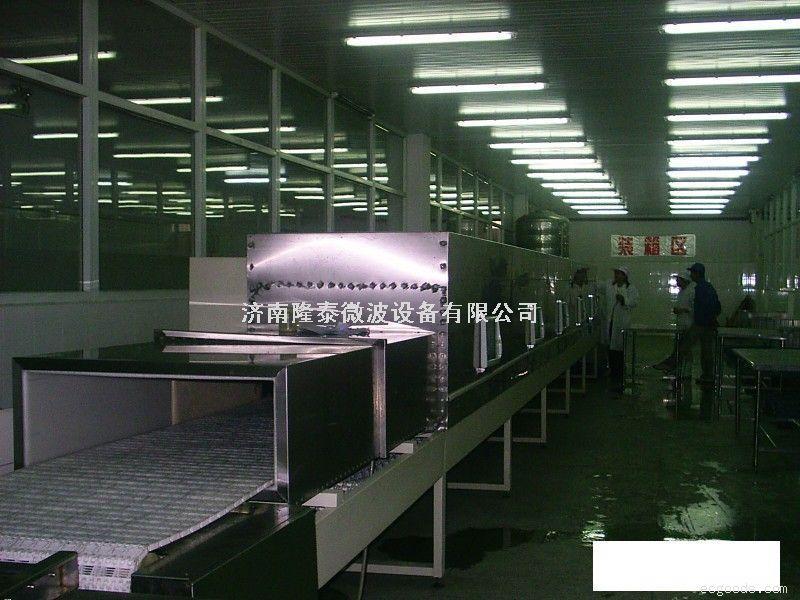 微波纸管干燥杀菌设备