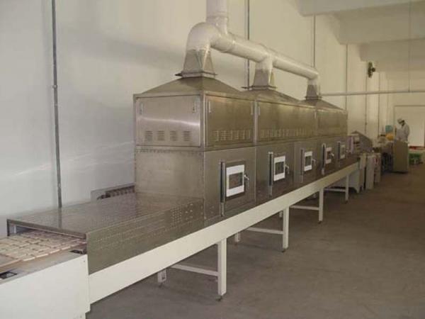 蜜饯产品微波杀菌机