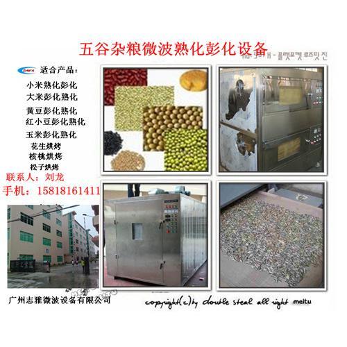 新型五谷杂粮熟化彭化设备