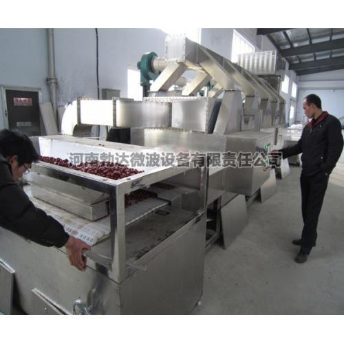 红枣微波干燥专用设备