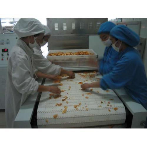 果脯蜜饯干燥杀菌设备