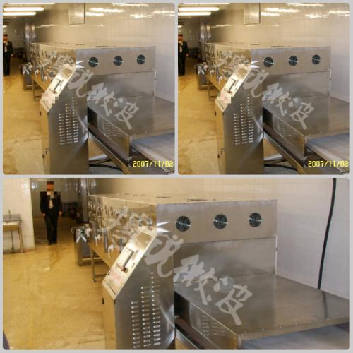 微波海鲜干燥杀菌设备