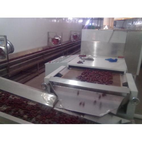 供应红枣微波干燥杀菌设备红枣微波干燥杀菌设备